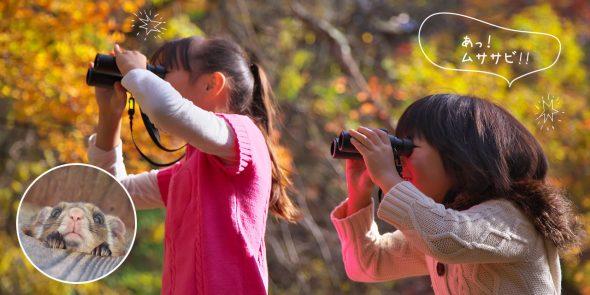 お子さまと一緒の今だからこそ大人も楽しめる!都会ではできないワクワクの自然体験を軽井沢で